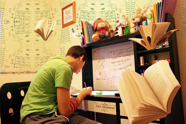 domácí učení