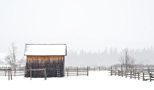 přístřešek v zimě